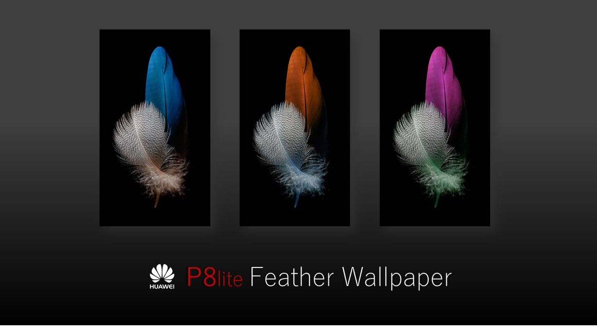 Huawei P8 Lite Feather Wallpapers